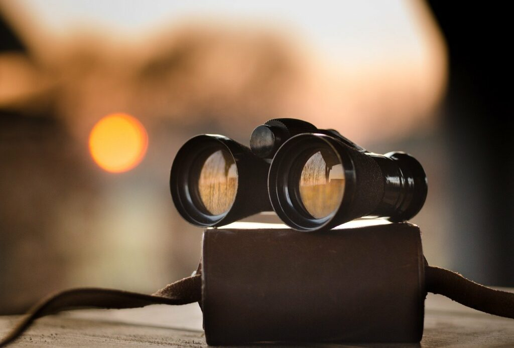 binoculars_on_case