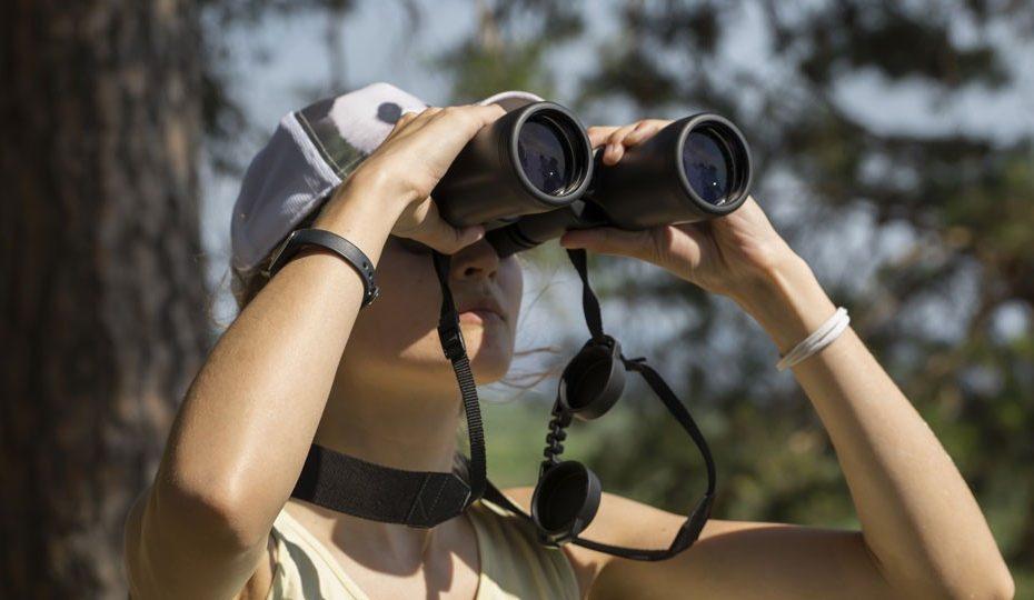 Binoculars, Source: B&H Explora
